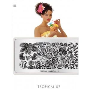 Tropical 07 (plaque MoYou)
